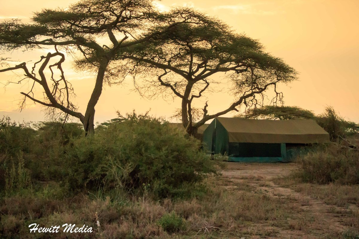 Camping in the Serengeti National Park